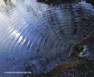 Аб Дзявочай затоцы Камайскага возера (легенда)