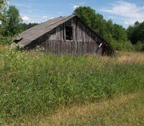 Как упраздняют деревни: голое поле и ухоженное кладбище